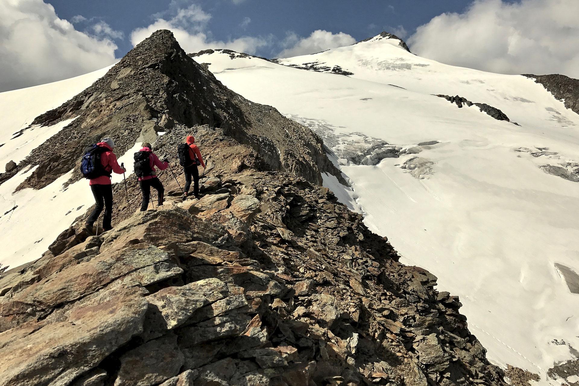 Am Weg zum Wilden Freiger - kurze Gletscherbegehung
